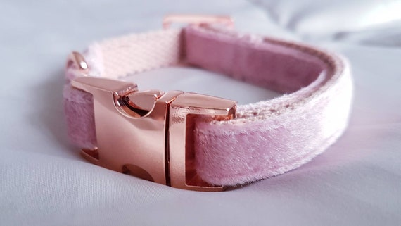Baby Pink Velvet Dog Collar - Luxury Soft Velvet with Rose Gold Buckle by Ollie + Co
