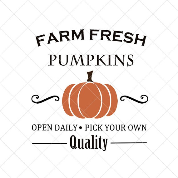 Instant Download svg, eps, png, jpeg, dxf Pick Your Own Farm Fresh Pumpkins
