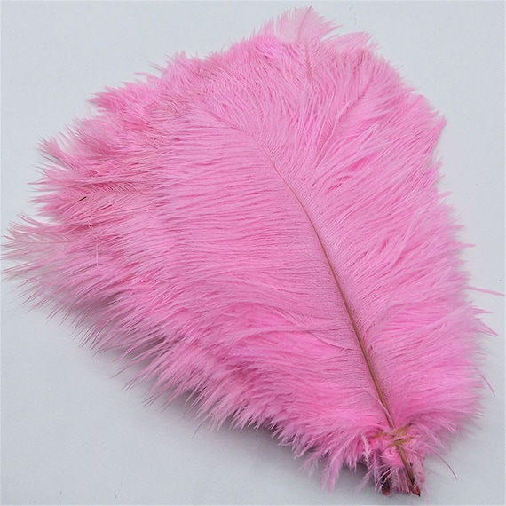 Happy Will 50 Pcs 10-12cm Real Natural Ostrich Feathers Great Decorations for Wedding Party Black