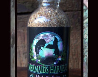 APPLE GINGERSNAP - Mermaid's Harvest Herb & Spice Sea Salt Blends