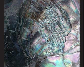 MIX and MATCH - SET of 4 - Mermaid's Harvest Herb & Spice Sea Salt Blends