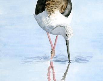 Black-winged stilt ORIGINAL watercolor painting, Bird watercolor, Wildlife painting, Nature illustration, Bird art, Birding art, Decorative