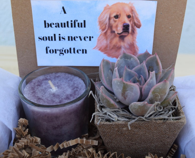 Sorry For Your Loss Pet Sympathy Gift A Beautiful Soul is Never Forgotten Pet Bereavement Gift- Golden Retriever Sympathy Gift