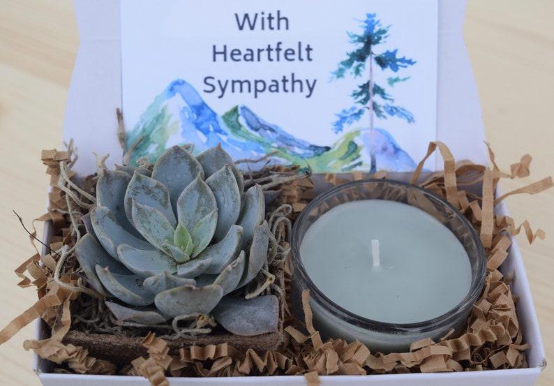 floral condolences Wooden Pot *Free Shipping* sympathy gift Our Deepest Condolences Succulent Arrangement Gift Box