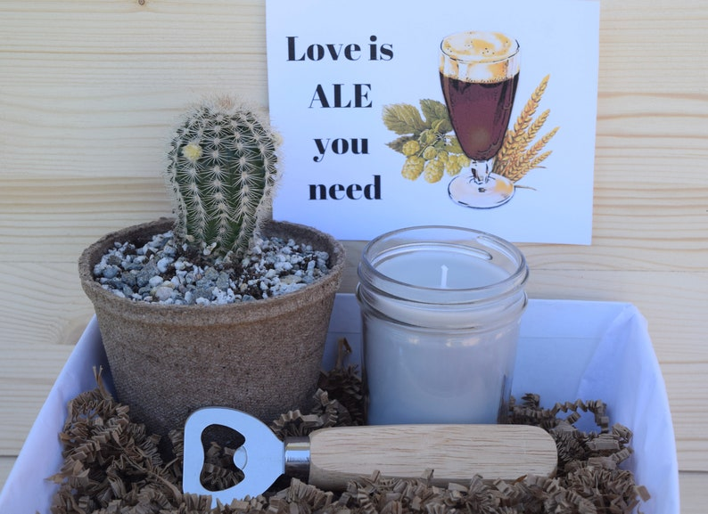 Succulent Gift Box For Him Love Is Ale You Need Beer