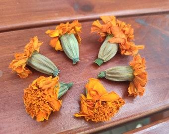 Dried orange Marigold flowers 30pc