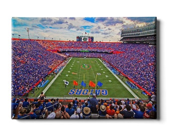 Florida Gators Ben Hill Griffin Football Team Stadium Print Personalized Officially Licensed NCAA Sports Photo 11 x 14