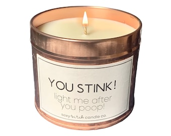 Funny Candle, Vegan Candle, Cruelty Free Candle Rude Candle, Silly Candle, Mature Offensive Christmas Gift Funny Xmas, You Stink Poop Candle