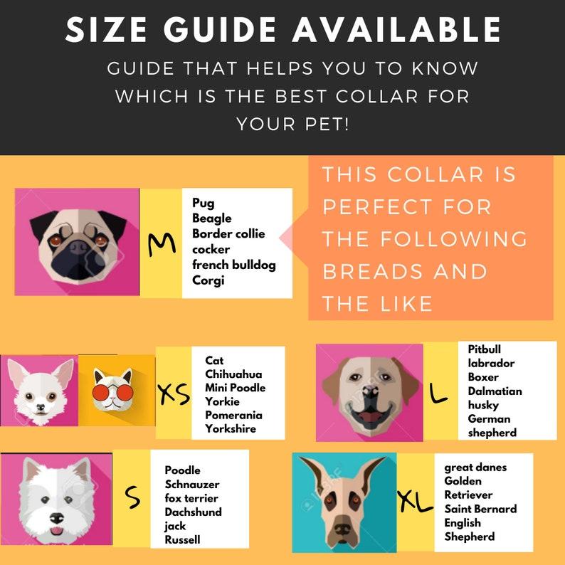 Medium handmade Dog collar