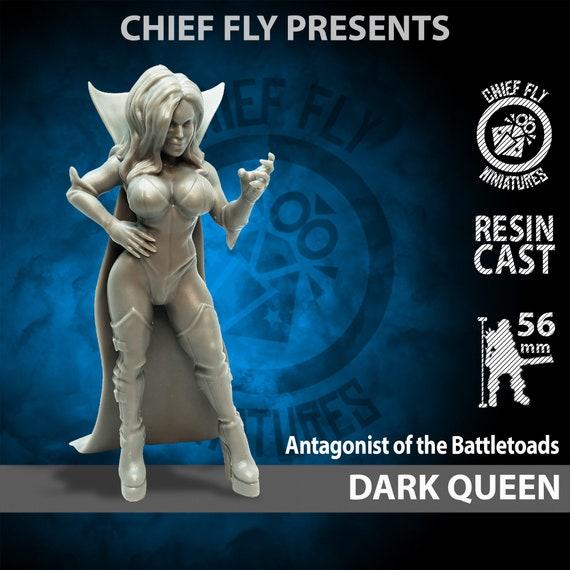 Battletoads vs Dark Queen 54 mm Custom Action figures
