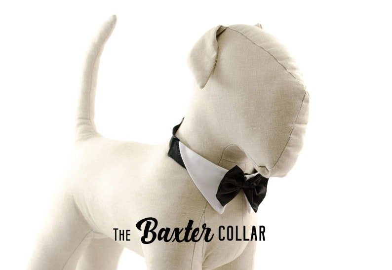 ad21a94edaa6 Collar and bow tie for dog in wedding white shirt collar | Etsy
