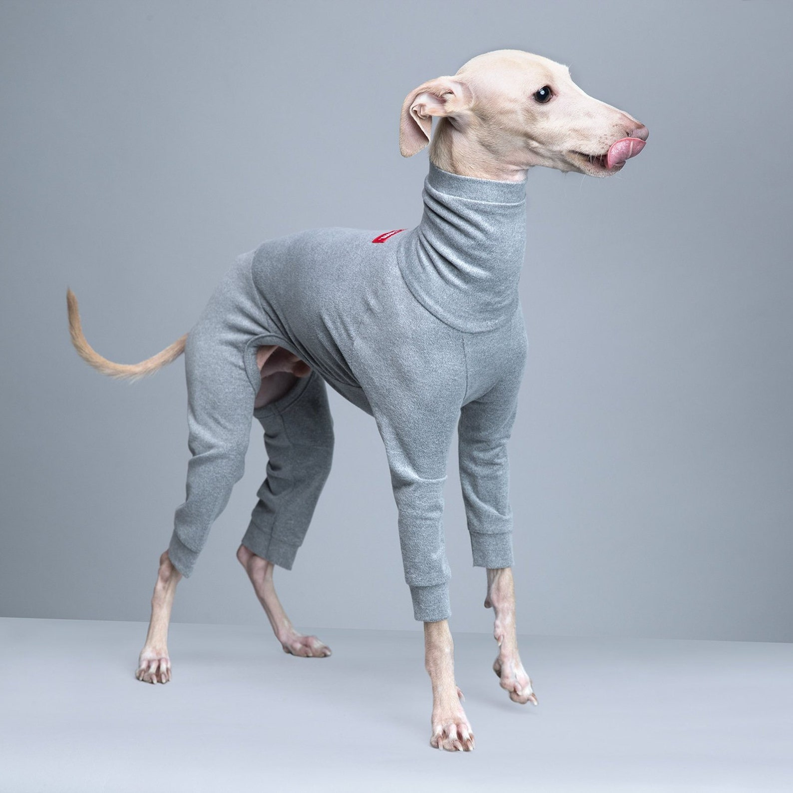 vemvem® ballet: slim heat - gray for italian greyhound