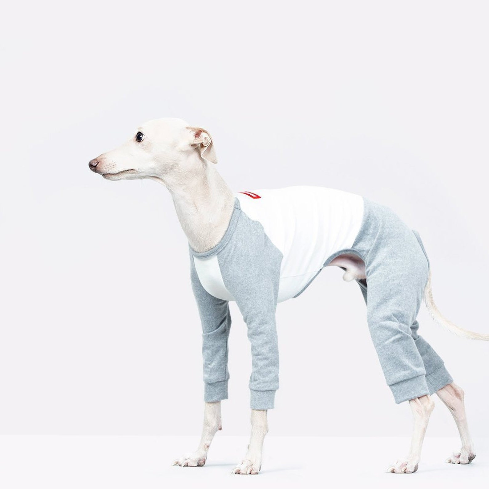 vemvem® ballet: slim heat neckless - raglan grey for italian greyhound