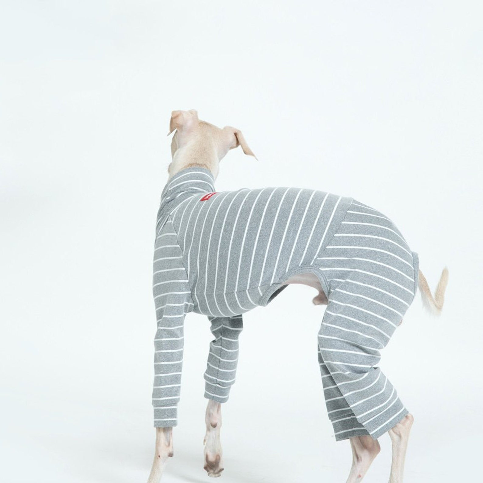 vemvem® ballet: slim heat - stripe - grey for italian greyhound