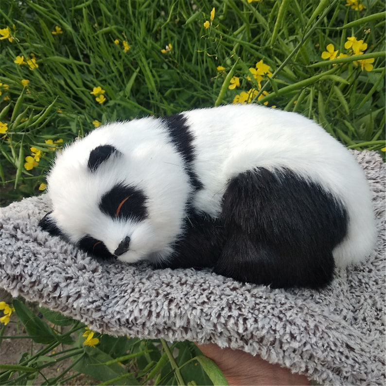 19. Panda Toy for Office, Car, Closet or Home Decoration