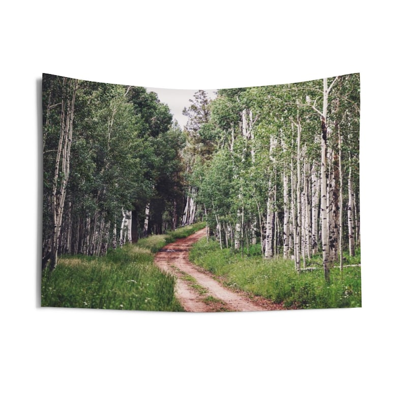 Colorado Mountain Path in the Aspen Trees Indoor Wall image 0