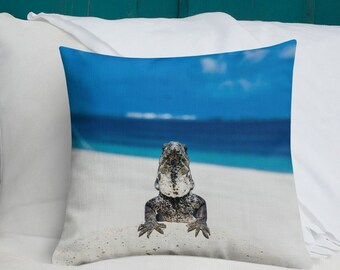 Blue Iguana For Sale : The blue iguana buy this stock photo and explore similar images