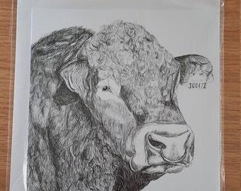 Limousin Bull Greetings Card (Blank)