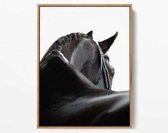 Black Horse Print, Black Horse Art, Black Horse Printable, Black Horse Photography, Digital Print - High-Quality Art - Printable Wall Art
