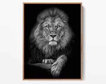 Lion Black and White Print - High-Quality Art - Printable Wall Art - Animal Wall Art - Scandinavian Print