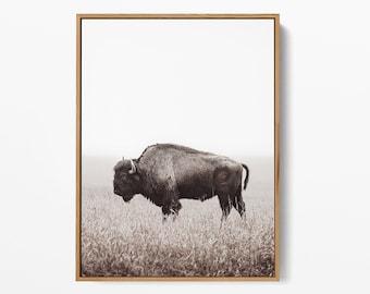Buffalo Print, Bison Wall Art, American Bison Print,Black White Animal,Black White Bison Print,Black & White Printable Art,Printable Bison