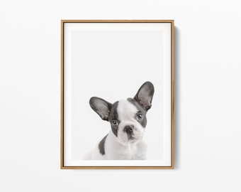 French Bulldog Puppy Print, puppy Wall Art, bulldog Print,Black White Animal,Black White dog Print