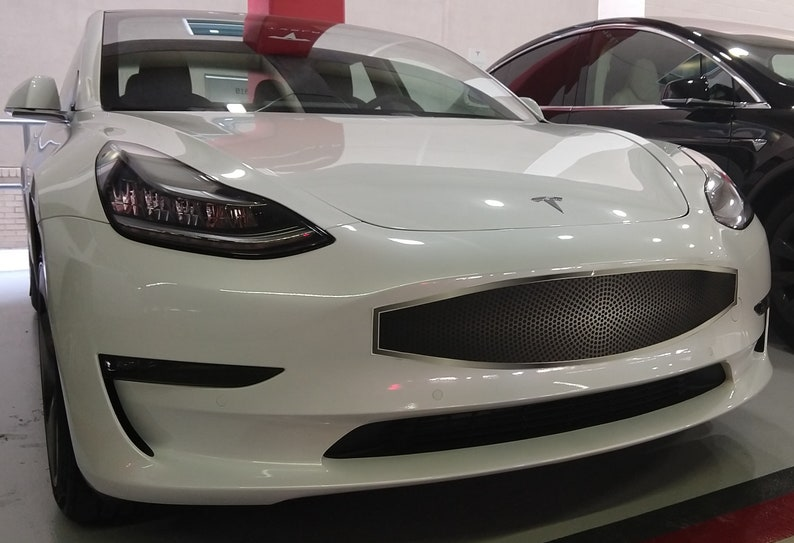 Vehicle Decal for the Tesla Model 3 or Y front bumper   Etsy