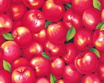 Apples-Farmer John's Garden Party Collection-Paint Brush Studios-Fruit Fabric- 100% cotton-Quilting Cotton-120-13351-Cut to Size