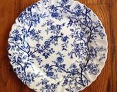Old Bradbury Dinner Plate Johnson Bros Blue Transferware