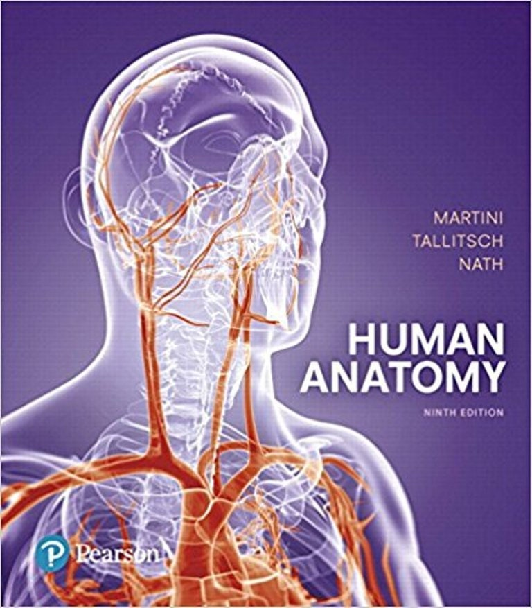 Human Anatomy 9th Edition Ebook Pdf Etsy