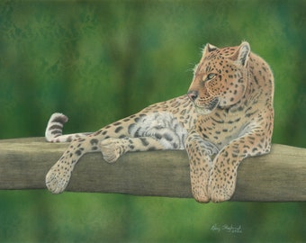 Leopard, signed, original coloured pencil wildlife animal drawing with an airbrushed background, 18x24 inch wall art