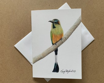 """Original coloured pencil 5""""x7"""" art card of a Turquoise-Browed Motmot, blank inside, wall decor, greeting card"""