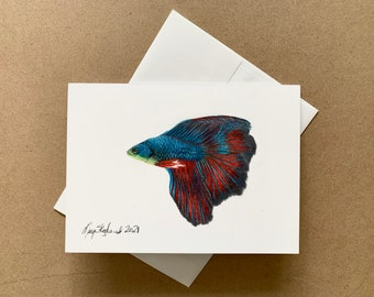 """Original coloured pencil 5""""x7"""" art card of a Siamese Fighting Fish or Betta Fish, greeting card, wall decor, gift of art"""