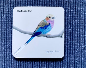 Art, Drink Coasters of my Lilac Breasted Roller original coloured pencil bird drawing, available single or as a set of 4