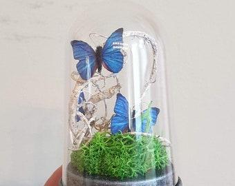 Miniature Bell jar with Butterfly PDF DIY Tutorial Bell jar with Butterflies Dome glass Bell jar Diorama PDF Tutorial