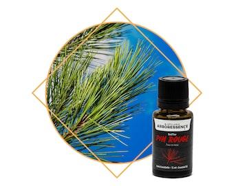 Red Pine Essential Oil (pinus resinosa)
