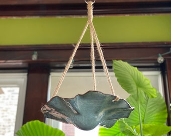 Funky and Flowing Hanging Succulent Planters
