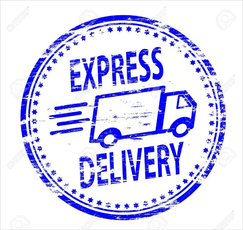 Very Fast Delivery delivery service International Express Delivery Express delivery express shipping
