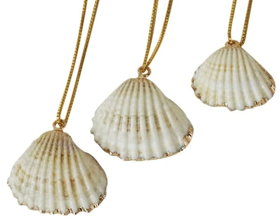 Paola Shell Pendant. Seashell and Rose Gold Plating.