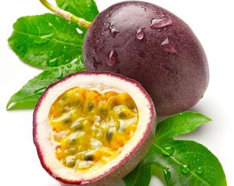 Fresh Passion Fruit (4 LBS ) The Actual fruit