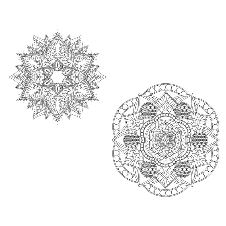 Single Mandala Coloring Pages for Adults Vol 1 PROCREATE ...
