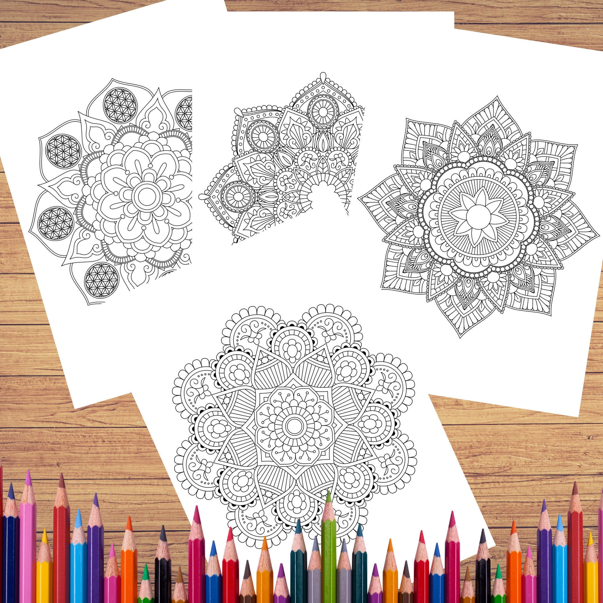 Single Mandala Coloring Pages for Adults Vol 6 PROCREATE ...
