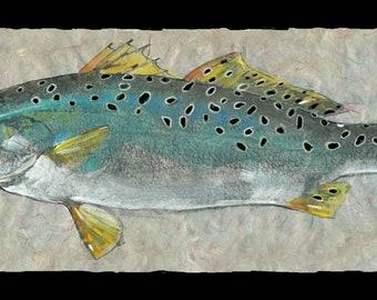 d9380bbb54b4d Sea trout