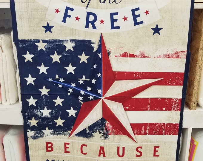 American Valor Fabric Panel, Patriotic Quilt Panel