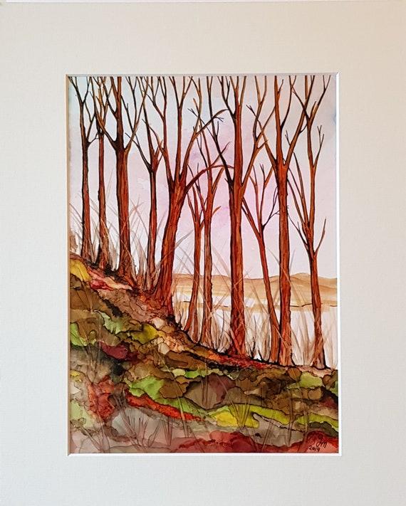 The wooded Hillside