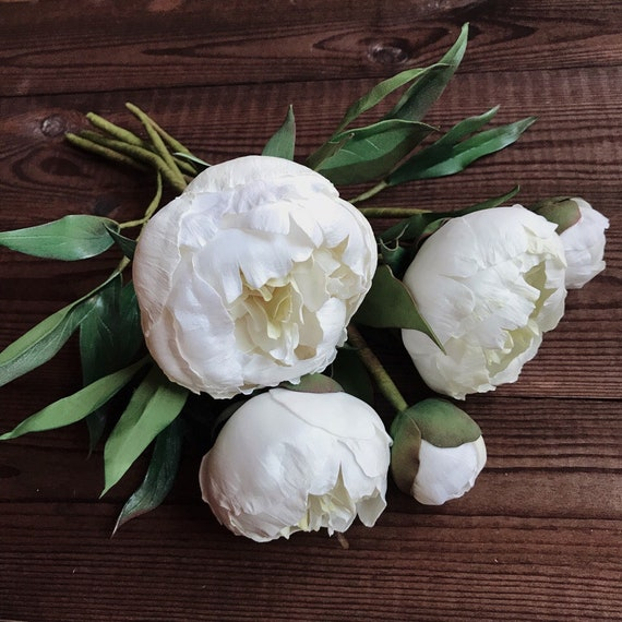 White Peonies Bouquet Real Flowers Arrangement Home Etsy