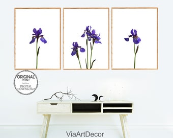 Blue iris print | Etsy
