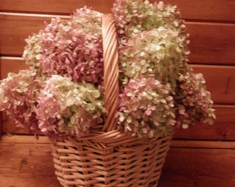 a54d4d086 Gorgeous Dried Hydrangea Basket for Your Home or Office!