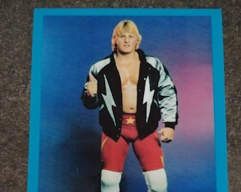 Stampede Wrestling Calgary Owen Hart Canada's Superstar promo style art print 4x6 photo WWE WWF