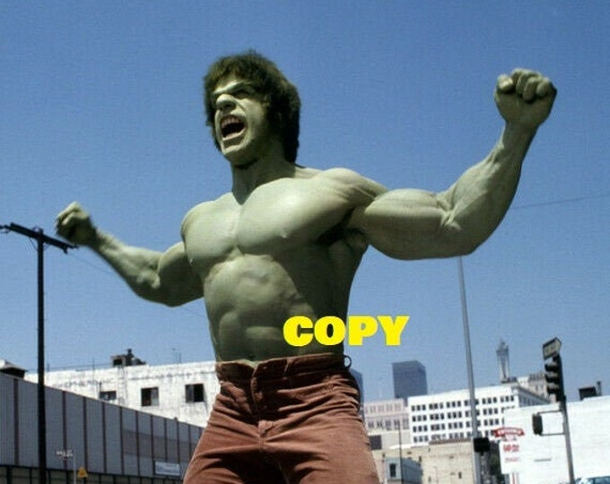 The Incredible Hulk 1970's TV show Lou Ferrigno Bill Bixby photo picture publicity RP 4x6 you pick photo